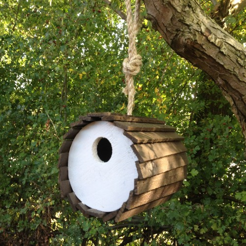 Fen House bird box