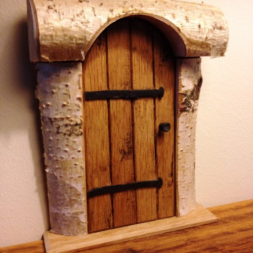Fairy oval door web